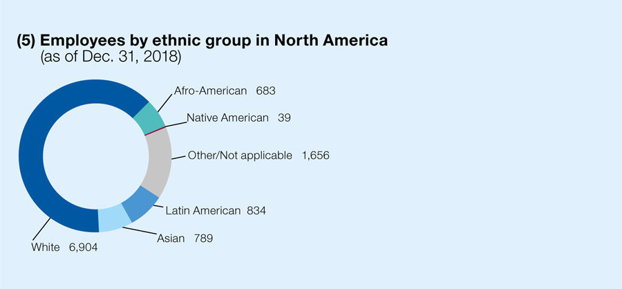 Employees by ethnic group in North America (as of Dec. 31, 2018)